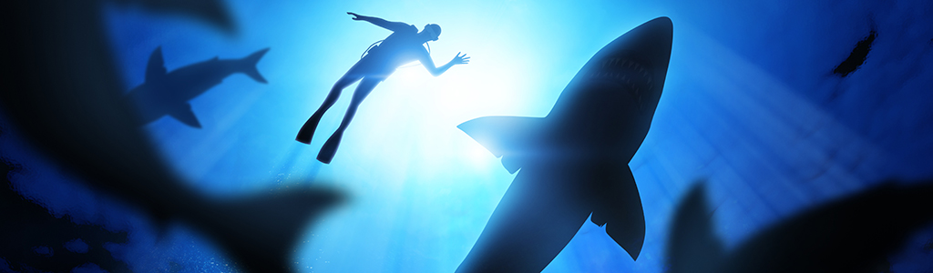 JAWS, questo sconosciuto